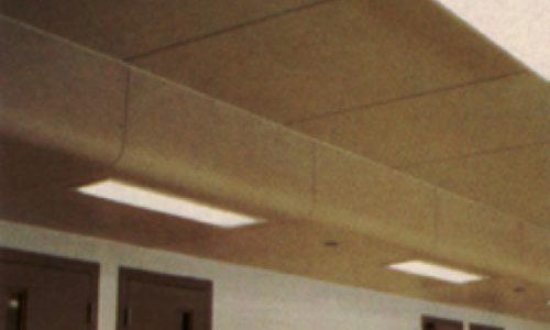 Secured Custom Ceiling Wall System